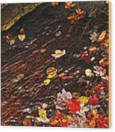 Autumn Leaves In River Wood Print
