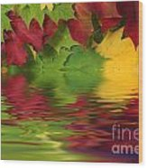 Autumn Leaves In Water With Reflection Wood Print