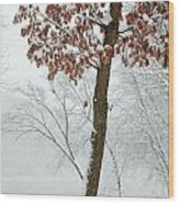 Autumn Leaves In Winter Snow Storm Wood Print