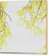 Autumn Leaves On Branch With Bridge In Background, Close-up Wood Print by Johner Images