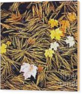 Autumn Leaves On Straw On Water Wood Print