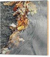 Autumn Leaves Tiny Dam Wood Print