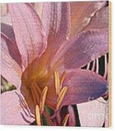 Autumn Lily Wood Print