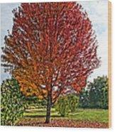 Autumn Maple Emphasized Wood Print