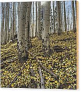 Autumn Memoirs  Wood Print