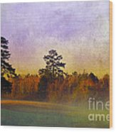 Autumn Morning Mist Wood Print by Judi Bagwell