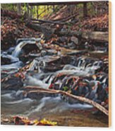 Autumn Moving Water With Foliage Wood Print