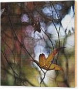 Autumn Mystere Wood Print