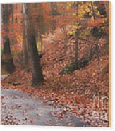 Autumn On A Quiet Country Lane Wood Print