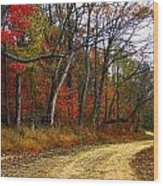 Autumn On Bottomland Road Wood Print