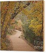 Autumn On Emerald Trail Wood Print