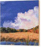 Autumn On Isle Of Palms Wood Print