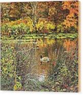 Autumn On Long Island Wood Print