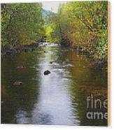Autumn On Satus Creek  Wood Print