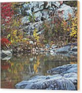 Autumn On The Black River 1 Wood Print