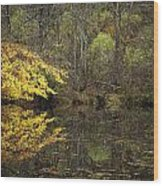 Autumn On The Pond Wood Print