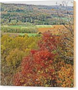 Autumn Over Look Wood Print