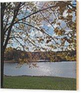 Autumn Overlooking The Dam Wood Print