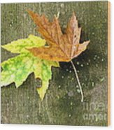 Autumn Pair Wood Print