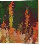 Autumn Pastel Wood Print by Tom Prendergast