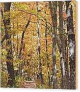Autumn Path 2 Wood Print