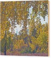 Autumn Picnic Spot Wood Print