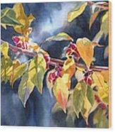 Autumn Plums Wood Print by Sharon Freeman