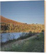 Autumn Pond 4 Wood Print