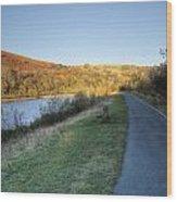 Autumn Pond 5 Wood Print