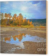 Autumn Puddles Wood Print
