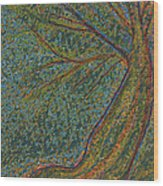 Autumn Rain Tree Wood Print