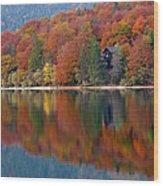 Autumn Reflections On Lake Bohinj In Slovenia Wood Print