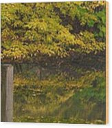 Autumn Reflections_0138 Wood Print