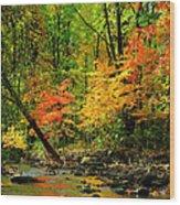 Autumn Reflects Wood Print