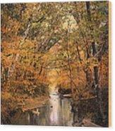 Autumn Riches 2 Wood Print by Jai Johnson