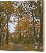 Autumn Road Colors Wood Print