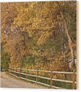 Autumn  Road To The Ranch Wood Print