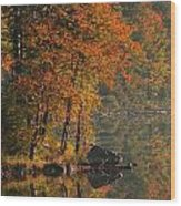 Autumn Scenic Wood Print