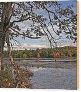 Autumn Shade Wood Print
