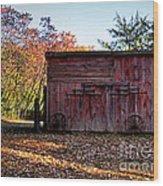 Autumn Shed Wood Print