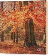 autumn skirt I Wood Print