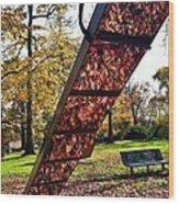 Autumn Slide Wood Print