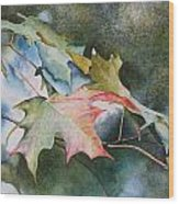 Autumn Sparkle Wood Print by Patsy Sharpe