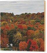Autumn Spectacular Wood Print