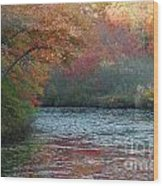 Autumn Splendor 1 Wood Print