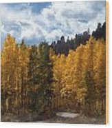 Autumn Splendor Wood Print by Carol Cavalaris