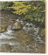 Autumn Stream 6149 Wood Print