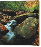 Autumn Stream Wood Print
