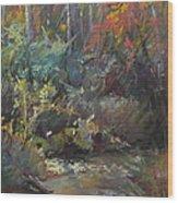 Autumn Stream Wood Print by Pamela Pretty