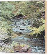 Autumn Streams Wood Print